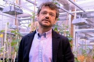Fico Eataly World vuole essere luogo di divulgazione, sostenibilità e business, ma anche di scienza, tramite l'omonima Fondazione: cos'è, e cosa si propone di fare, secondo Andrea Segrè, Professore di Politica Agraria presso l'Università di Bologna