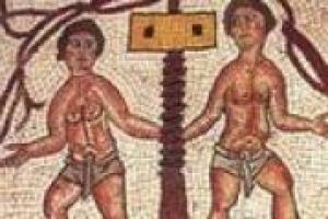 Il vino ha sempre ricoperto un ruolo centrale nella storia dell'uomo: da centro della tavola a protagonista in alcuni testi fondamentali dell'antichità. A parlare a WineNews di approccio storico alla vite e al vino, i professori Beta e Bevilacqua