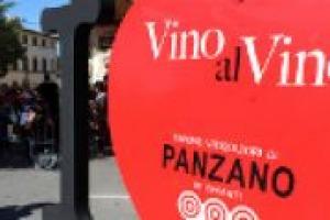 Nato un anno fa, quello di Panzano, nel Chianti, è il bio - distretto vinicolo più grande d'Europa. Merito di 30 aziende che, da anni, si ispirano ai principi del biologico. A WineNews Valeria Viganò Orsini, a capo dell'Unione Viticoltori di Panzano