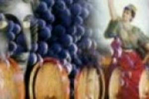 ''I vini d'Italia'' è il progetto che attraverso 15 documentari racconterà il vino del Belpaese. Ai microfoni di WineNews il tre volte premio Oscar Vittorio Storaro, supervisore alla cinematografia dell'iniziativa, e il figlio Giovanni, produttore