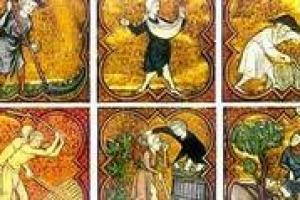 """""""Il vino in Toscana ha una storia che nasce intorno al 1000 con piccoli vigneti intorno alle città. Nel 1200/1300 la viticoltura diventa uno dei sistemi più redditizi dello sfruttamento della terra"""". Così il Giuliano Pinto docente di storia medievale"""
