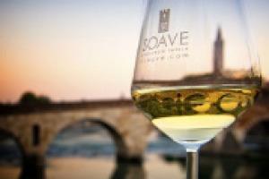 Il Soave è una delle denominazioni del vino più importanti d'Italia. Ma qual è il suo stato di salute, e quali le prospettive sui mercati esteri? A WineNews da SoavePreview il direttore del Consorzio Aldo Lorenzoni