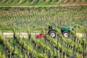 Il progetto Magis diventa pratica, con il ''Manuale di Sostenibilità''. A WineNews le testimonianze di 4 cantine che hanno aderito al progetto sin dall'inizio: Arcipelago Muratori, Conti Zecca, Agricola San Felice e Bepin De Eto