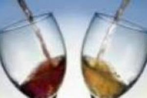 C'è un pò di Francia nel vino d'Italia: si intesifica la collaborazione tra Zonin e Dobourdieu, uno degli enologi più autorevoli del mondo. I commenti di Cristophe Ollivier, enologo e collaboratore di Dubourdieu, e Franco Giacosa, direttore di Zonin