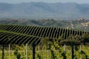 """Può un paesaggio essere """"moltiplicatore di valore"""" di un vino? Come possono incidere la bellezza, la storia e la cultura di un luogo per la promozione di un prodotto in bottiglia? Winenews lo ha chiesto all'architetto urbanista Pier Carlo Tesi"""