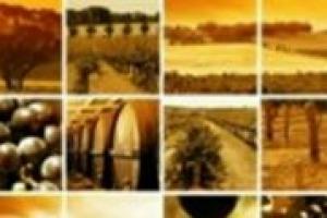 La comunicazione del wine & food? Spesso racconta più il ''floklore''che la storicità, la fatica e il sacrificio che c'è dietro un prodotto di qualità. Il pensiero di Rita Serafini di Aicig, l'Associazione Italiana Consorzi Indicazioni Geografiche