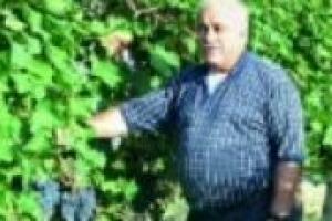 ''La ricerca in vigna porta ricadute positive su tutto il comparto vitivinicolo, per questo è fondamentale che le aziende la sostengano, anche in momenti di crisi come questo''. Parola di Attilio Scienza, tra i massimi esperti di enologia