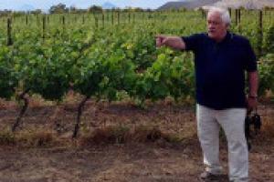 """""""In Italia, dove la viticoltura è storicamente diffusa, rischiamo una concentrazione in certi territori del vino, un po' come in Francia, e una sorta di monocoltura"""". La provocazione di Attilio Scienza, tra i massimi esperti di viticoltura al mondo"""