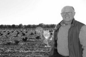 Vino e Usa tra app, millennials e Trump: il mondo del vino tricolore alla prova di una nuova (e promettente) generazione di bevitori a stelle e strisce, tra certezze, nuove possibilità e timori, per Steve Raye, ad Bevology Inc.