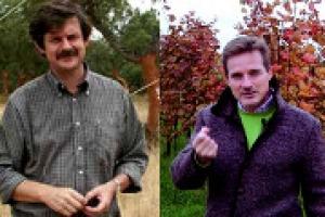 Nelle parole del professor Andrea Pitacco e dell'agronomo Marco Tonni (Sata), Winezero, il progetto pilota del Consorzio Vini Venezia, in collaborazione con il Consorzio Prosecco Doc, che ha misurato l'impronta carbonica della filiera vitivinicola
