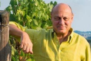 Il Chianti Classico chiude il mese di maggio con un +58% delle vendite sullo stesso mese del 2016: un segnale di salute per tutto il territorio, ma c'è ancora tanto da fare, come racconta a WineNews il presidente del Consorzio Sergio Zingarelli