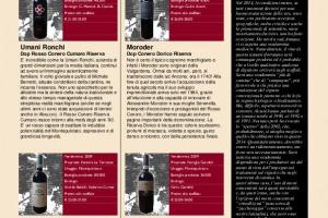 I Quaderni di Winenews - N. 106
