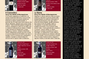 I Quaderni di Winenews - N. 113