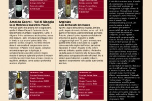 I Quaderni di WineNews - N. 17