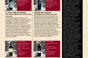 I Quaderni di Winenews - N. 21