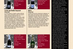 I Quaderni di Winenews - N. 24