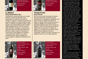 I Quaderni di Winenews - N. 29