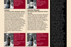 I Quaderni di Winenews - N. 31