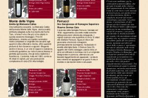 I Quaderni di Winenews - N. 40