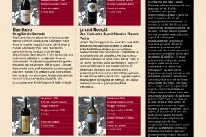 I Quaderni di Winenews - N. 45