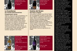I Quaderni di Winenews - N. 62