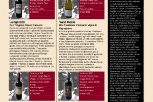 I Quaderni di Winenews - N. 67