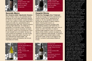 I Quaderni di Winenews - N. 90