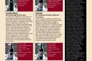 I Quaderni di Winenews - N. 91