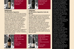 I Quaderni di Winenews - N. 96