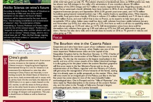 Italian Weekly Wine News N. 288
