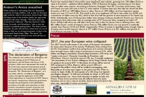 Italian Weekly Wine News N. 335