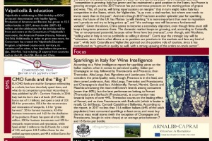 Italian Weekly Wine News N. 349