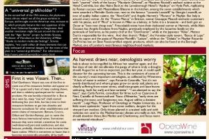 Italian Weekly Wine News N. 44
