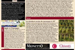 La Prima di WineNews - N. 1197