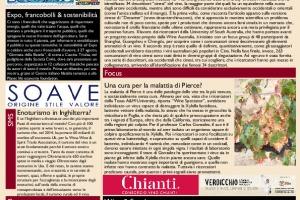 La Prima di WineNews - N. 1700