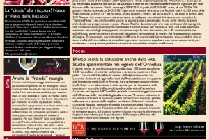 La Prima di WineNews - N. 181