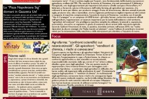 La Prima di WineNews - N. 275