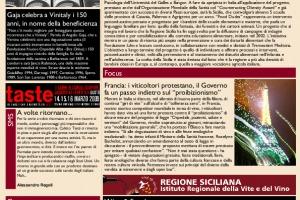 La Prima di WineNews - N. 38