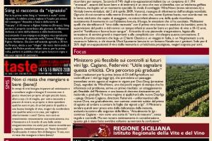 La Prima di WineNews - N. 41