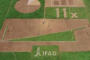 """I piccoli agricoltori africani lanciano un messaggio ai leader mondiali all'Onu a New York, scrivendolo direttamente sulla terra: un gigantesco """"Field Report"""" con tanto di grafici e dati, per spiegare l'importanza degli investimenti a lungo termine"""
