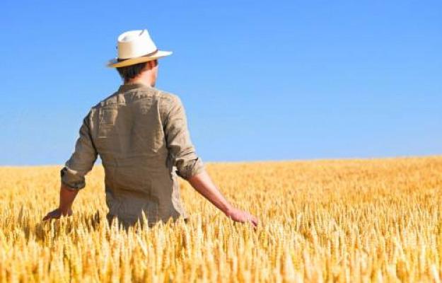 AGRICOLTURA, PAC, UE, Non Solo Vino