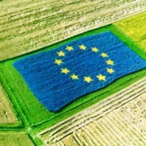 """Coldiretti: """"la riforma della Pac sia votata dal nuovo parlamento Ue, dopo le elezioni"""""""