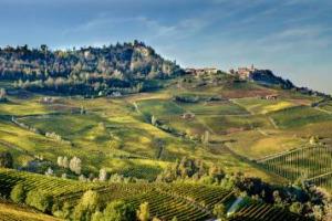 """Nel Barolo si discute sull'allargamento della zona di produzione: il Consorzio di Tutela ha chiesto alla Regione 30 ettari in più nel 2018 (su oltre 2100 attuali). Ma la Cia si oppone. La storia su """"La Stampa"""" firmata Roberto Fiori"""
