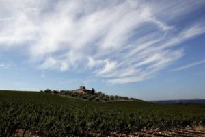Il Distretto Rurale del Chianti, unione di Consorzio del Chianti Classico e 7 Comuni, è operativo