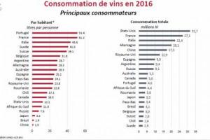 Gli Stati Uniti, come noto, e il Portogallo, un po' a sorpresa: ecco i due Paesi leader, il primo per consumi di vino complessivi, il secondo per consumi pro capite, secondo i dati Oiv
