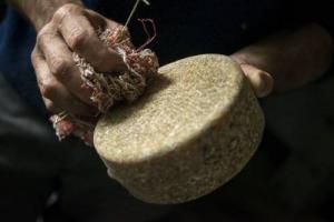 """""""Cheese 2017"""", l'evento targato Slow Food (15-18 settembre, Bra) dedica l'edizione n. 20 al formaggio a latte crudo, un segnale politico per chi continua a produrre questi formaggi, nonostante le difficoltà. Ad aprirlo, le parole di Carlin Petrini"""