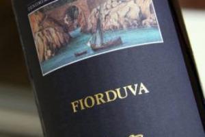 Nella classifica dei 75 vini più entusiasmanti del 2017 stilata da Decanter, sono ben 14 gli italiani presenti da tutto lo Stivale: da Marisa Cuomo col Furore Bianco Fiorduva 2015 (n. 4) a Valpolicella Ripasso Superiore 2014 di Santa Sofia (n. 62)