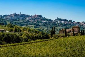 """Nonostante una vendemmia 2017 difficilissima, per il Nobile di Montepulciano è un'annata a """"5 stelle"""", il massimo del rating (rumors WineNews). In 15 anni, secondo il Consorzio, nel territorio arrivati 340 milioni in vigna e in cantina"""