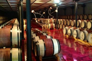 """Ornellaia protagonista dell'asta di Christie's del 15 marzo: """"Fine & Rarest Wines"""" la 12 litri de la Vendemmia d'Arista """"Il Carisma"""" 2015, valutata tra le 2.200 e le 3.500 sterline. Sotto il martello anche l'Ornellaia Bianco 2014 e 2015"""