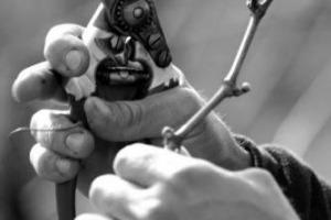 Niente astronauta, ballerina o tronista, il lavoro dei sogni per i giovani italiani è legato a qualità del made in Italy: secondo uno studio di Klaus Davi nella top ten ci sono lo stilista, l'orafo, il designer d'interni e, ovviamente, il viticoltore